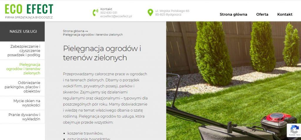 Zakładanie i pielęgnacja ogrodów - Pielęgnacja ogrodów i terenów zielonych